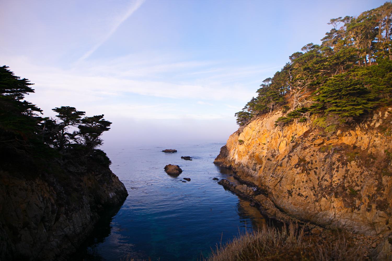 West Coast (2)9