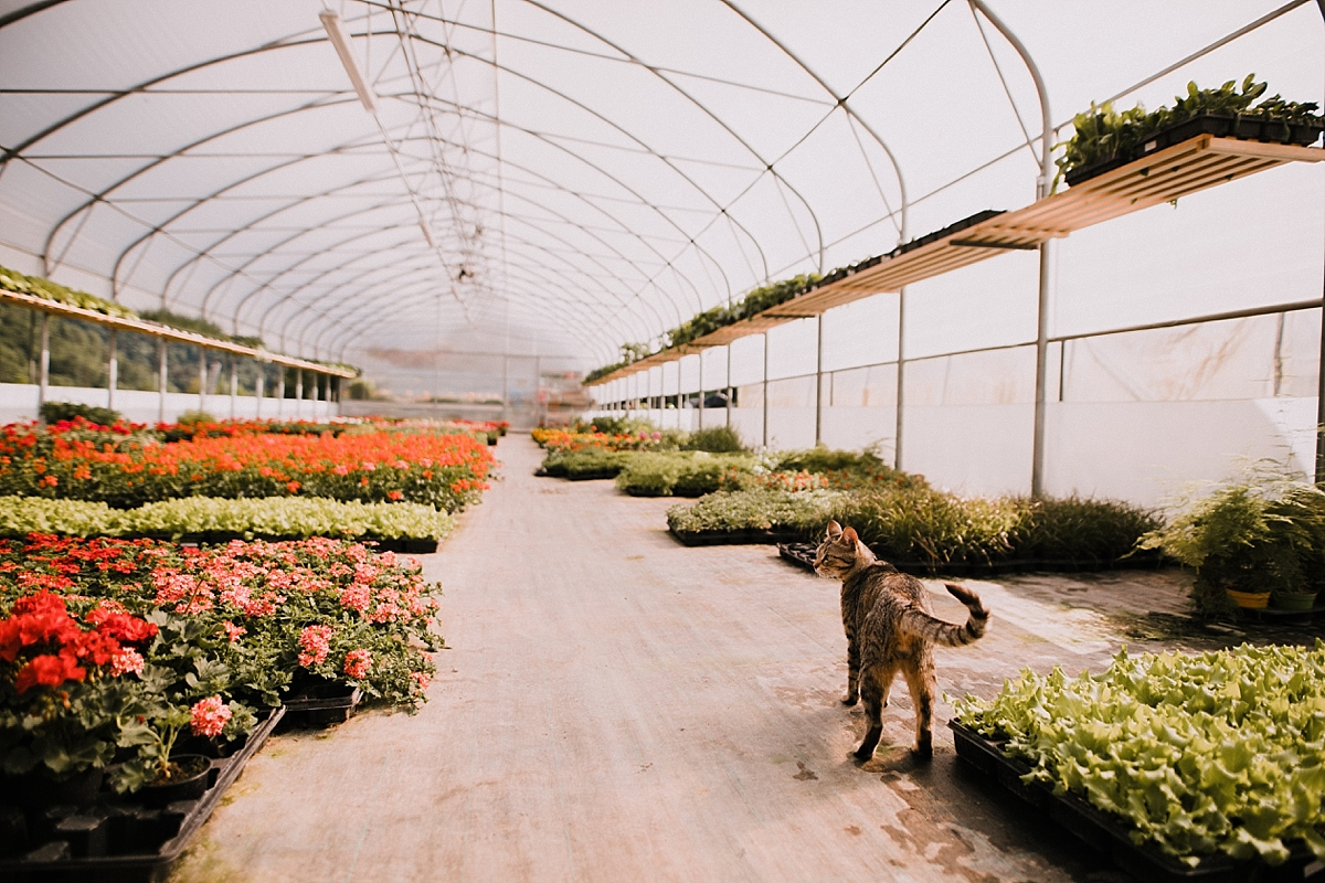Fotografiranje Vrtnastva Gardening Portrait11