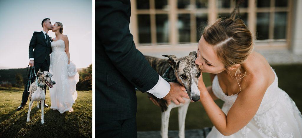 Poročno fotografiranje s psom